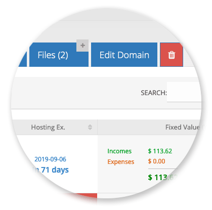 Domain Manager - Files